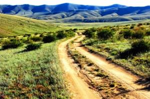 Mongolie Reizen
