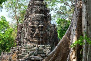 De leukste reizen naar Cambodja vind je bij NativeTravel!