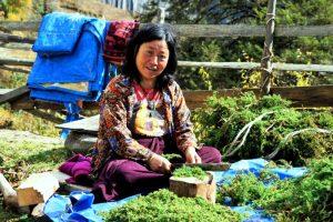 Rondreizen Bhutan met NativeTravel
