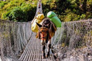 Trekking Nepal met NativeTravel