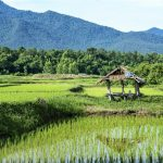 Rondreizen Thailand met NativeTravel